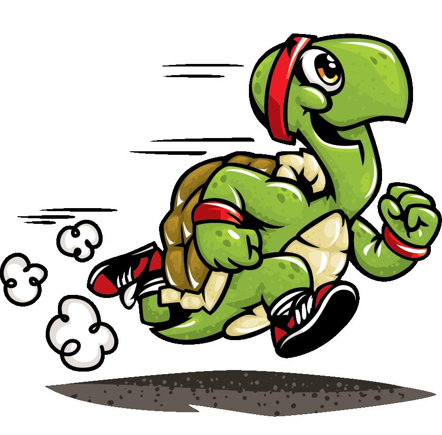 Turtoise clipart run #3