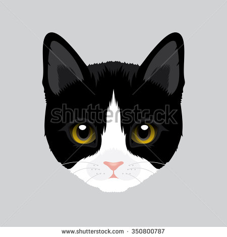 Tuxedo Cat clipart Tuxedo Download Download clipart Cat