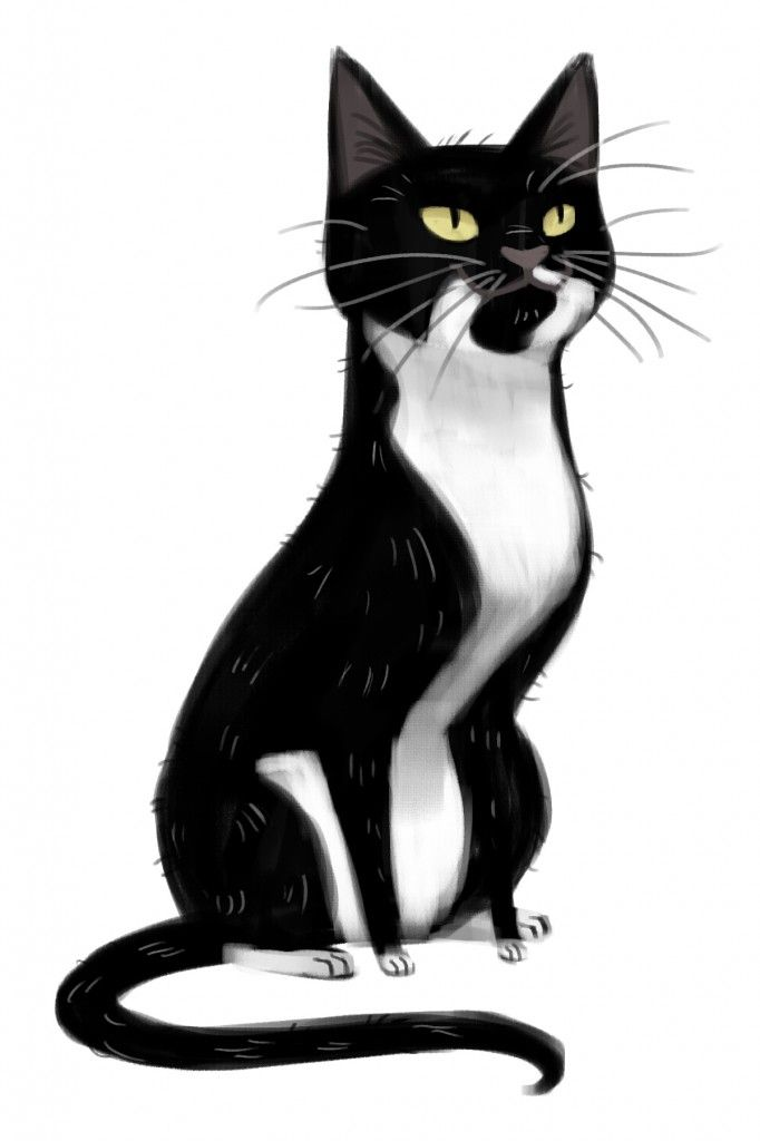 Black Cat clipart tuxedo cat About daily Cat fix Tuxedo
