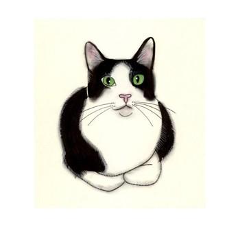 Tuxedo Cat clipart Tuxedo and 3 4