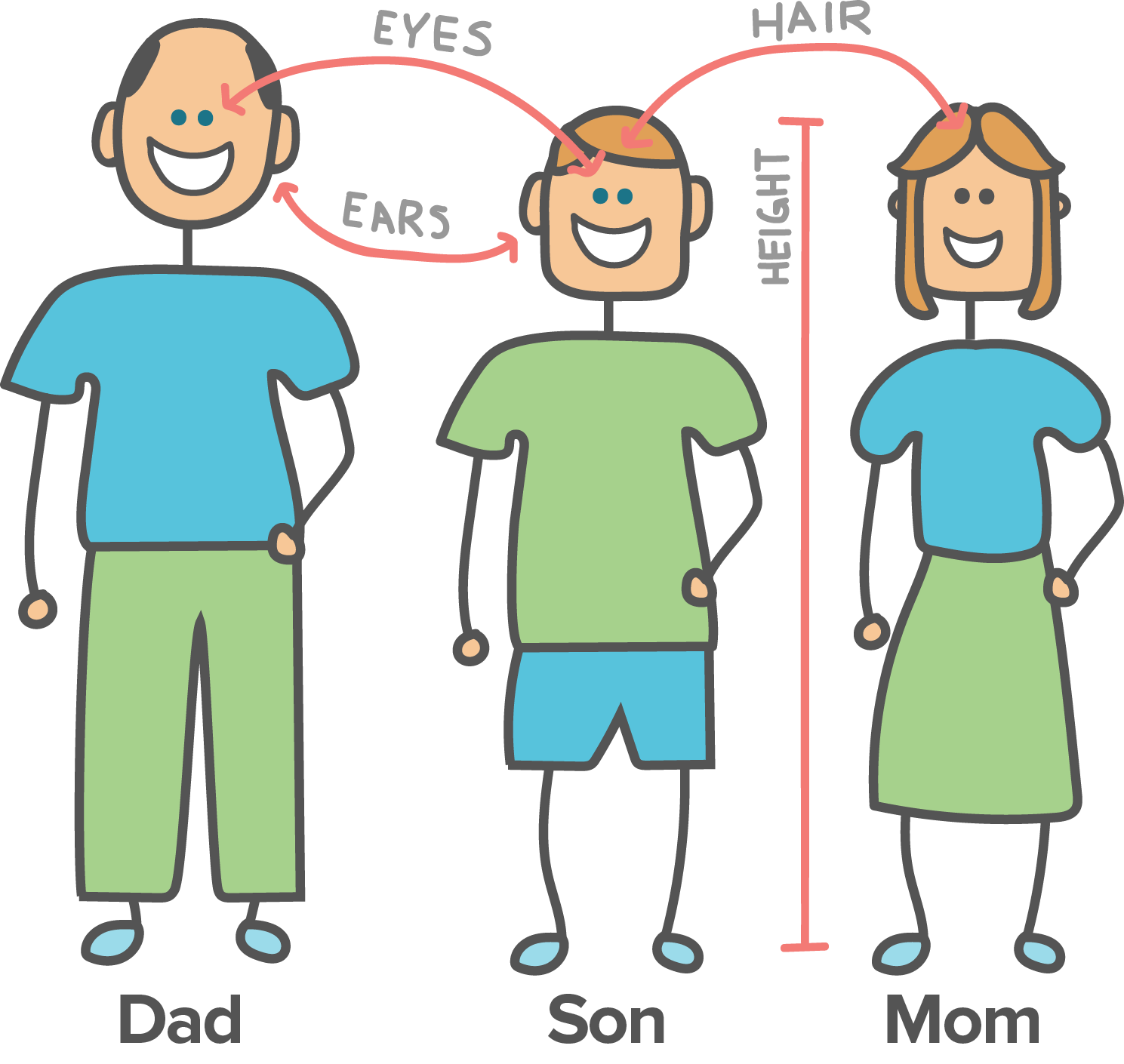 Community clipart human environment interaction Academy (article) son eye showing