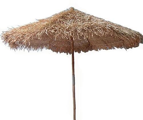 Tropics clipart umbrella #3
