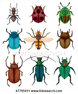 Beetles clipart arthropod Clipart Clipart Insect Tiny #162