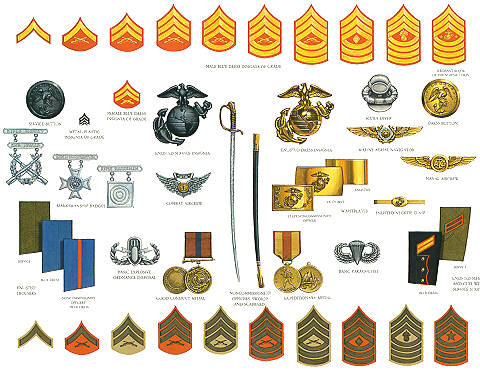 Uniform clipart military branch Pin Military  Find and