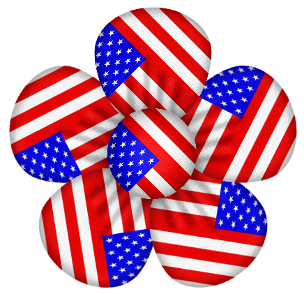 American Flag clipart flower Pin more Find Art 4th