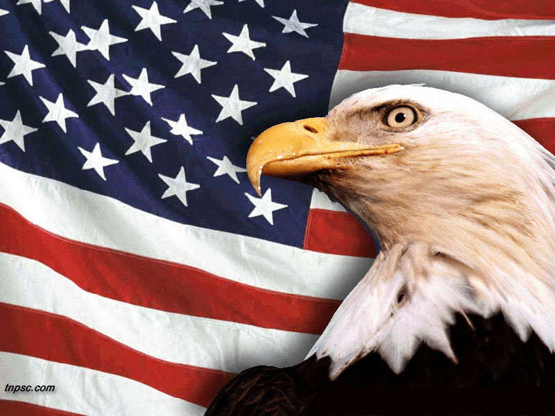 USA clipart american freedom #9