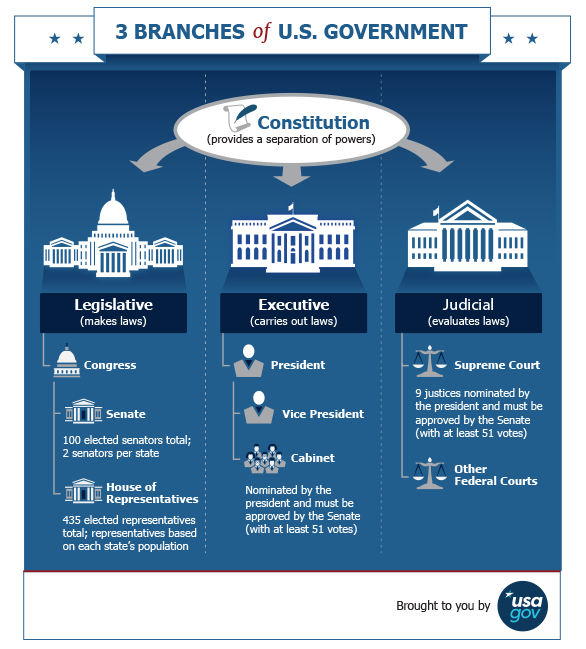 America clipart branch government S 3 Branches infographic of