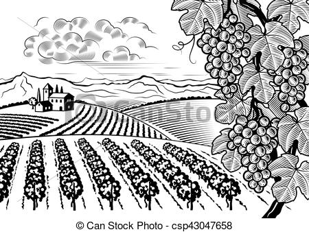 Vineyard clipart Of  landscape white black
