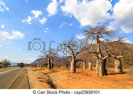Valley clipart forest road In Tanzania forest valley through