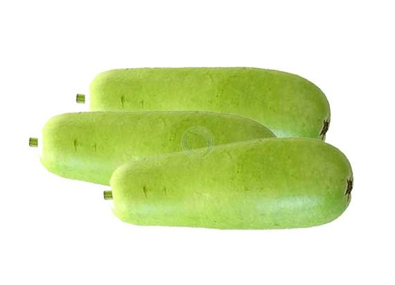 Vegetable clipart bottle gourd Of Vegetables per Gourd fruit
