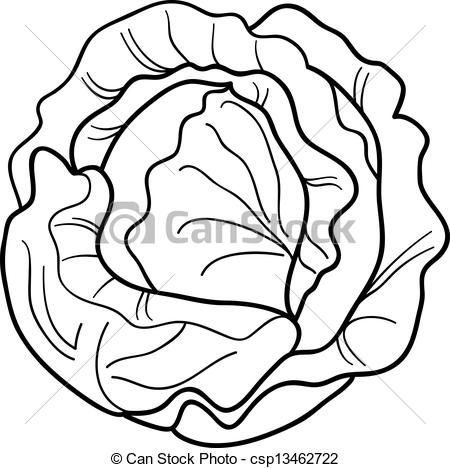 Cabbage clipart sketch EPS vector  Stock Clipart