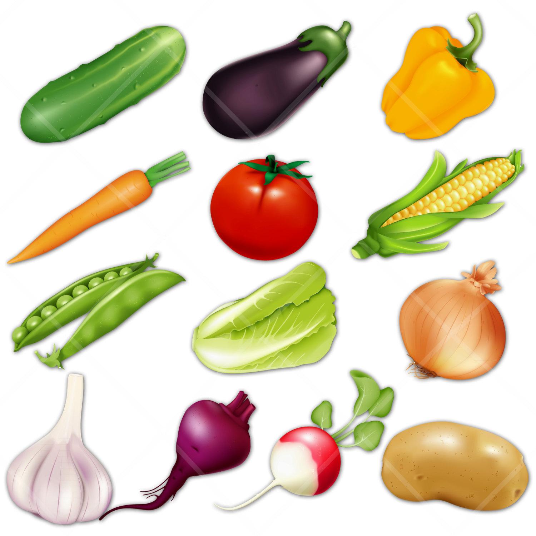 Cauliflower clipart sayur Of Free Vegetables  DigitalVintageDreams