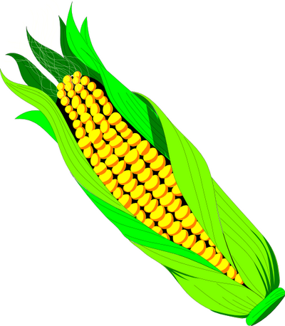 Vegetable clipart corn Art Pictures domain public art