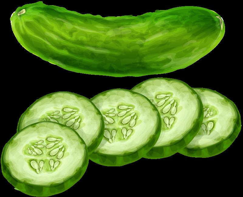 Vegetable clipart cucumber Cucumber Cucumber Pinterest Vegetables Pepino