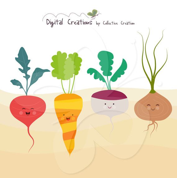 Vegetable clipart cute Commercial on Set Cute 31