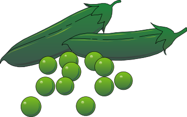 Bean clipart pea plant Clipart Free pages Domain Vegetable