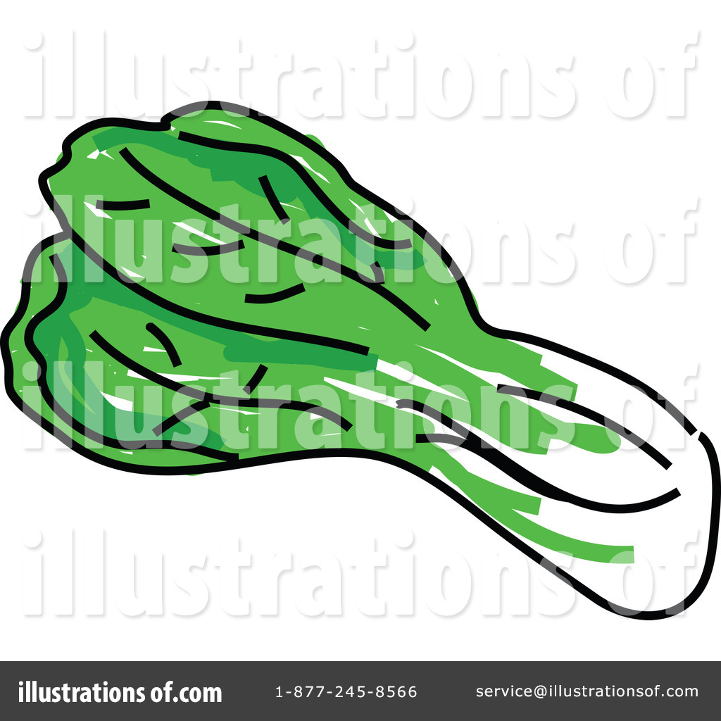 Cabbage clipart petchay Illustration #66117 #66117 Prawny Illustration