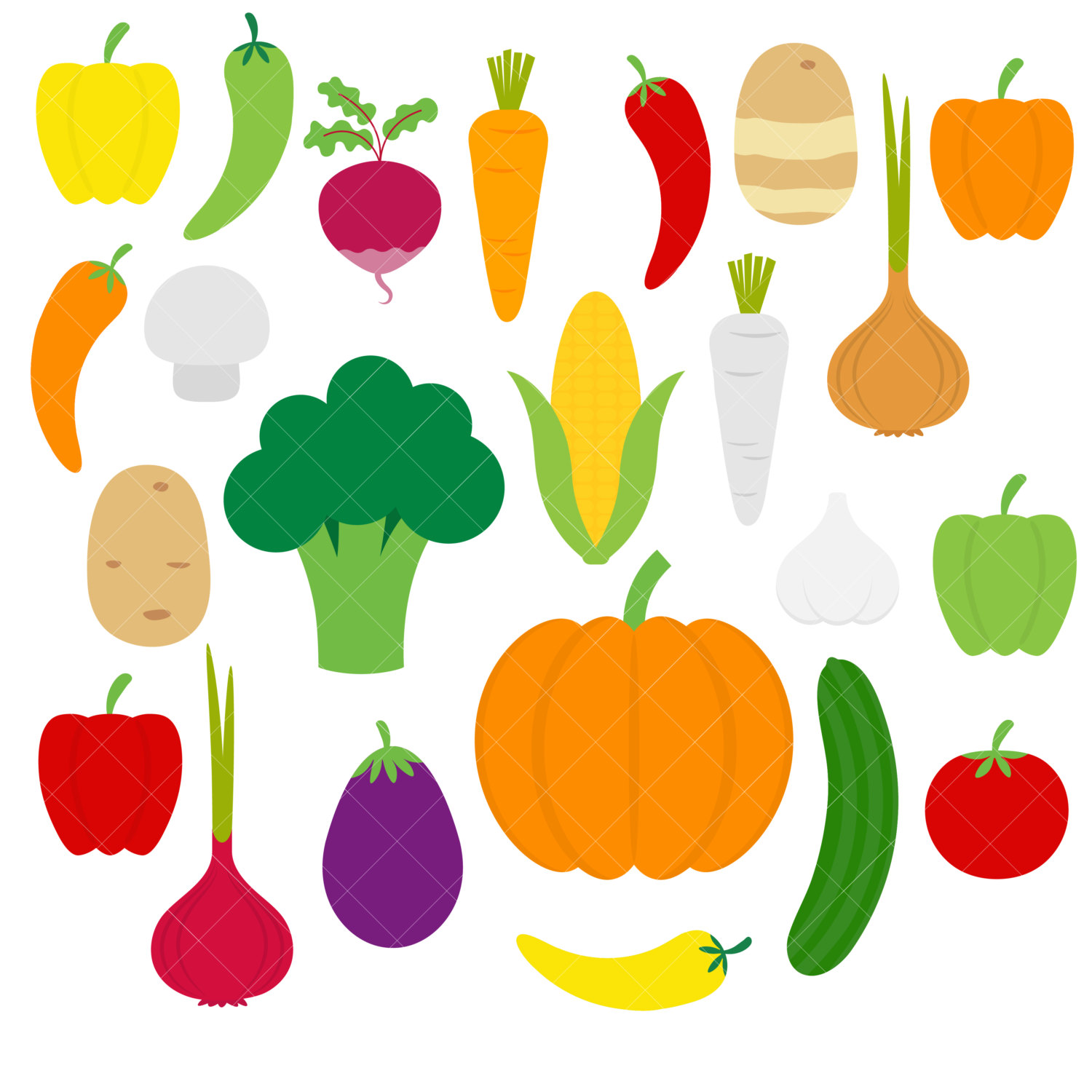 Vegetable clipart pumpkin / Broccoli / / file