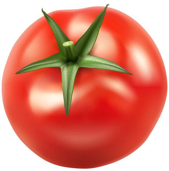 Cherry Tomato clipart pepper plant Image Tomatos 263 on Pinterest