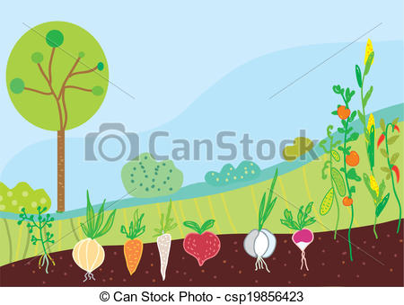Background clipart vegetable garden #4
