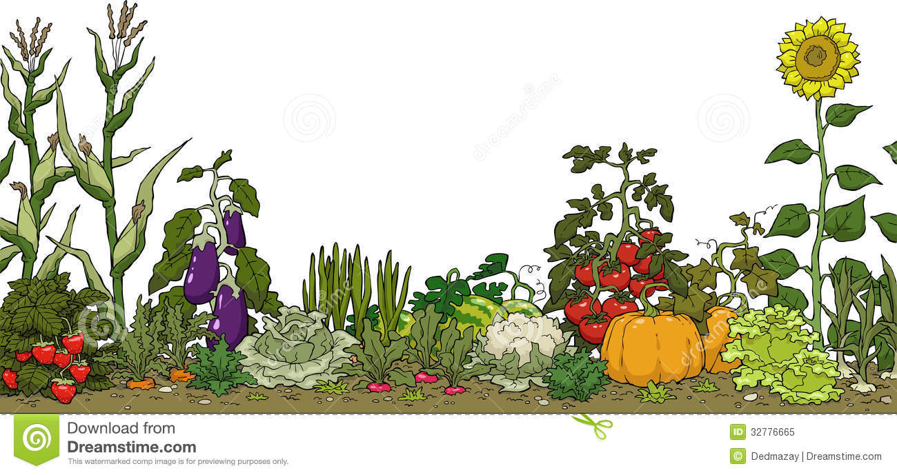 Background clipart vegetable garden #2