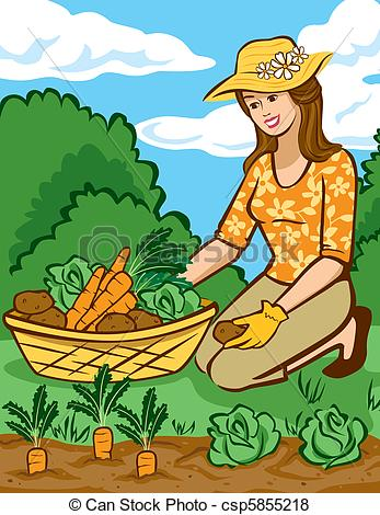 Vegetable clipart vegetable plant Home in Vegetables a Vector