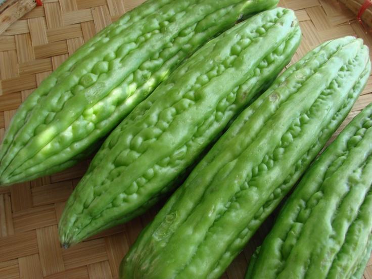 Vegetables clipart ampalaya Gourd) Bitter images on Pinterest