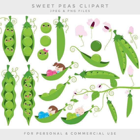 Pea clipart cute Digital flowers Peas a pod