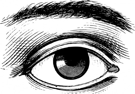 Victorian clipart Clipart of human drawing eye
