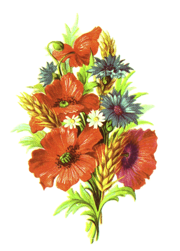 Wildflower clipart flower bouquet Public wheat vintage vintage