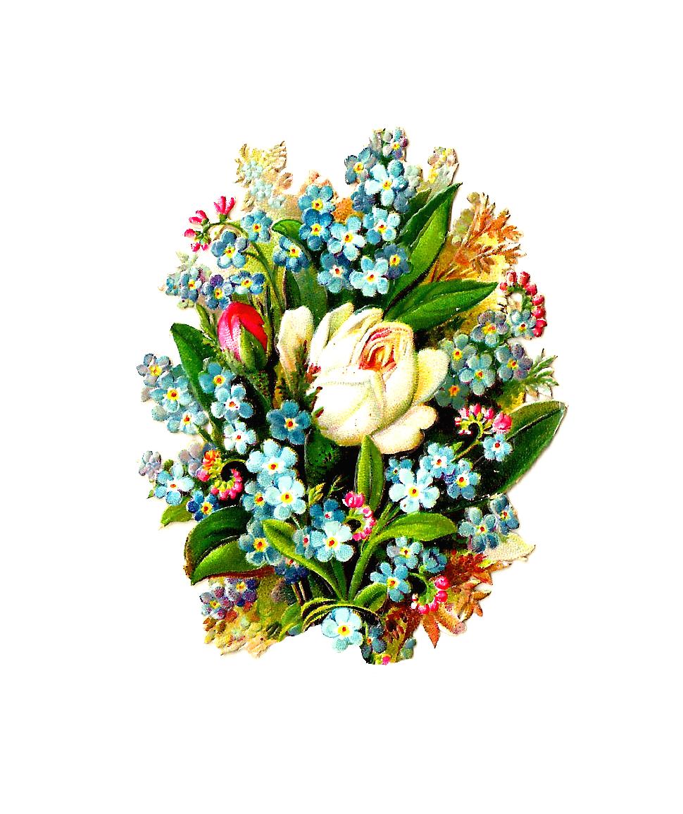Vintage Flower clipart flower bunch Rose Digital Images: Art: Forget