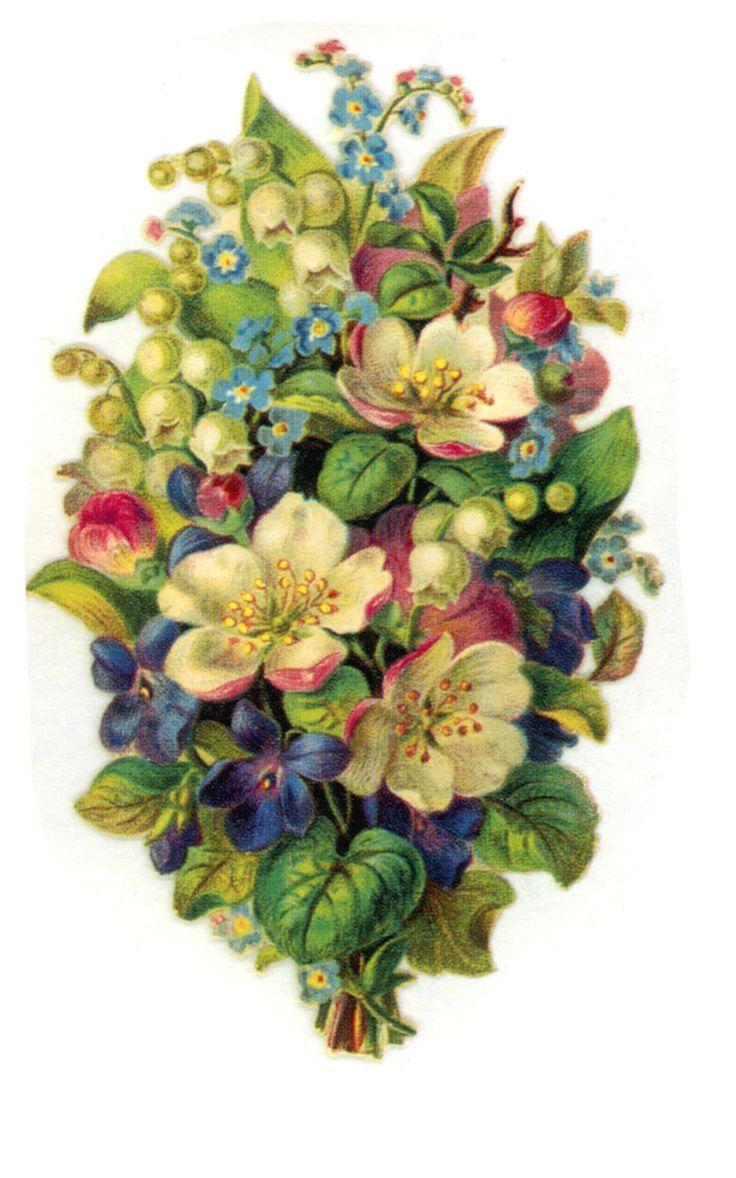 Vintage Flower clipart colored Floral paper Pinterest images Prints