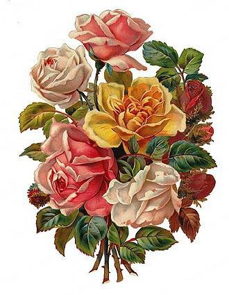 Rose clipart antique flower #3