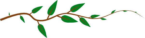 Branch clipart jungle Free art vines Free images