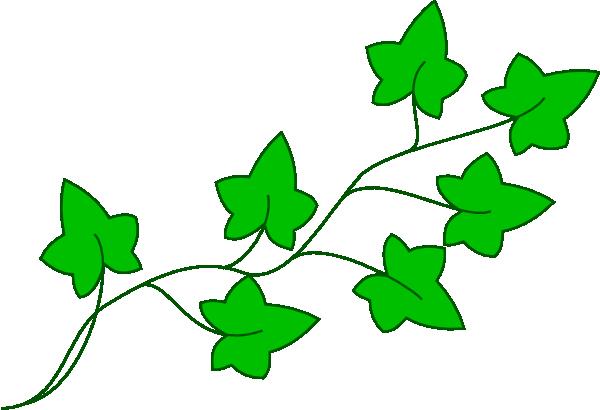 Ivy clipart grape leaves Clip Vine clipart Free Vine