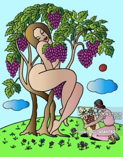 Grape clipart dionysus #3