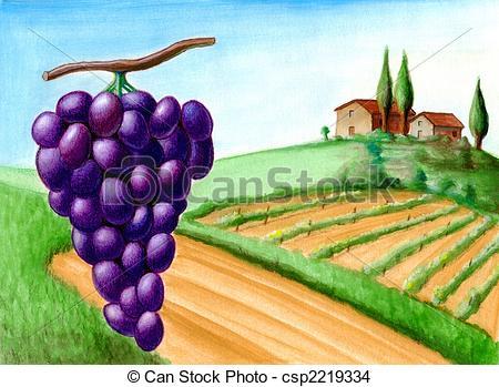 Vineyard clipart crop Wine  Drawing and vineyard