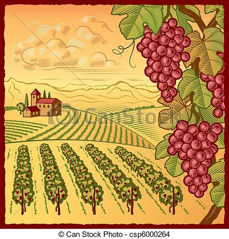 Vineyard clipart drawing Vector EPS Vineyard of in