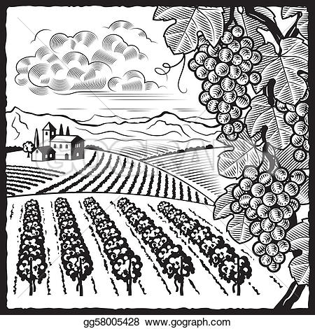 Vineyard clipart drawing Vector Clipart Art with vineyard
