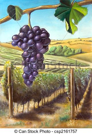 Vineyard clipart english Vineyard Suitable Grape and Grape