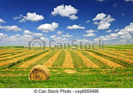 Grain clipart wheat farm Pictures field Farm Stock farm