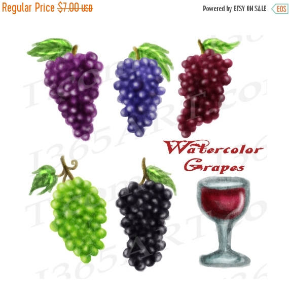 Vineyard clipart grape plant Watercolor art Elements Grapes Vineyard
