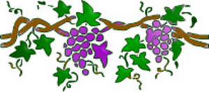 Grape clipart grape tree Cuttings Retreat Today Mountains vine