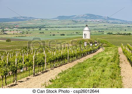 Vineyard clipart land Photo Czech Bilovice Photo vineyard