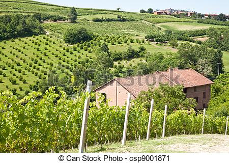 Vineyard clipart land Villa Photography Stock villa season