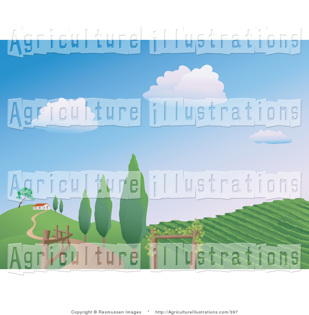 Vineyard clipart land Royalty Designs Agriculture Land