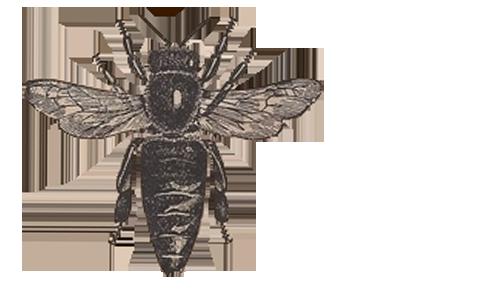 Bees clipart vintage Clipart Vintage Vintage Clipart Bee