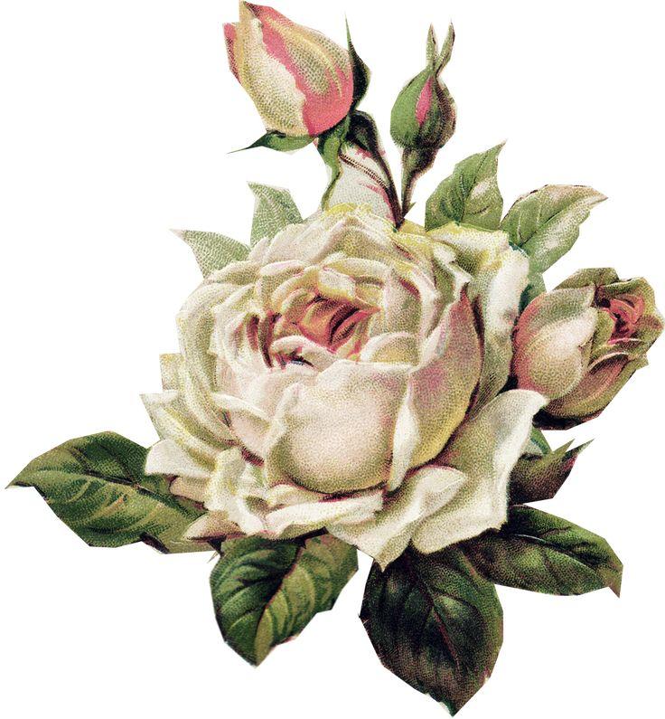 Vintage Flower clipart church flower #14