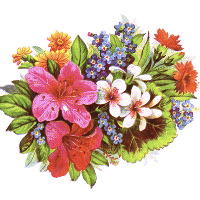 Vintage Flower clipart flower cluster Bouquet bouquet Vintage Flower photo#15