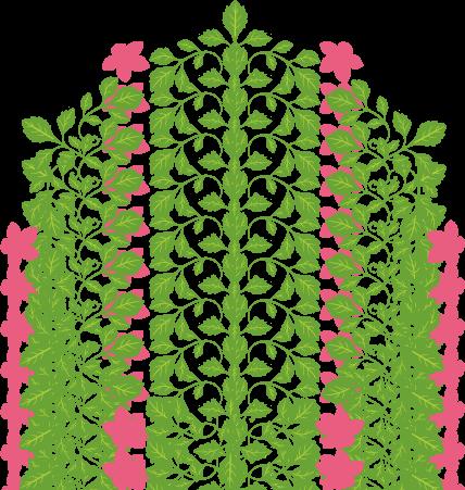 Circle clipart floral  image image 飾りフレームNo Art